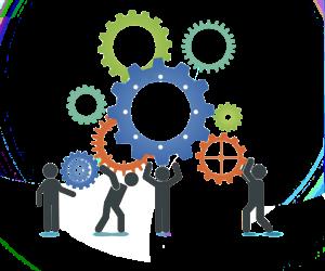 7 principii care asigură succesul unei organizații (1)