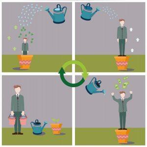 7 principii care asigură succesul unei organizații (2)