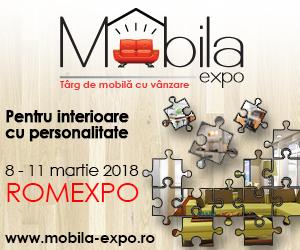 300-x-250-px-mobila-expo.jpg